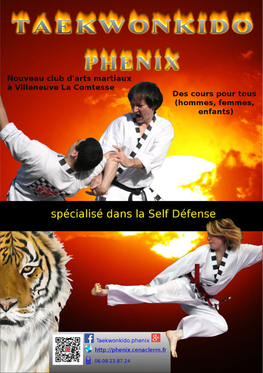 Flyer Taekwonkido Phenix